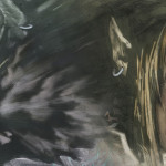 The Legend of Zelda: Twilight Princess Getting Wii U HD Remake